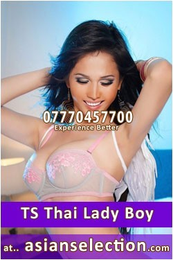 ts asian escorts thai women